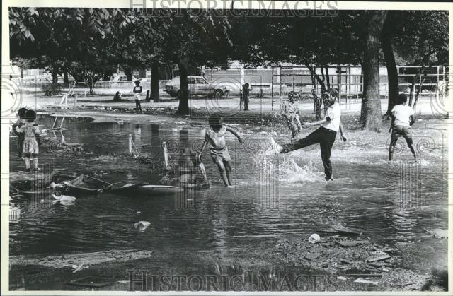 1988 Press Photo Henry Horner Homes Chicago   eBay