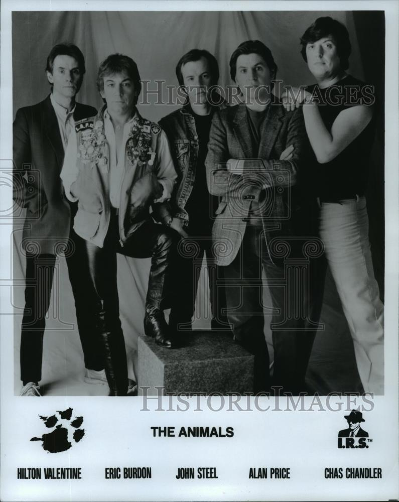 Image of: Guitar Image1 Chris Walter Photoshelter Details About 1984 Press Photo Hilton Valentine And Members Of The Animals Spp47473