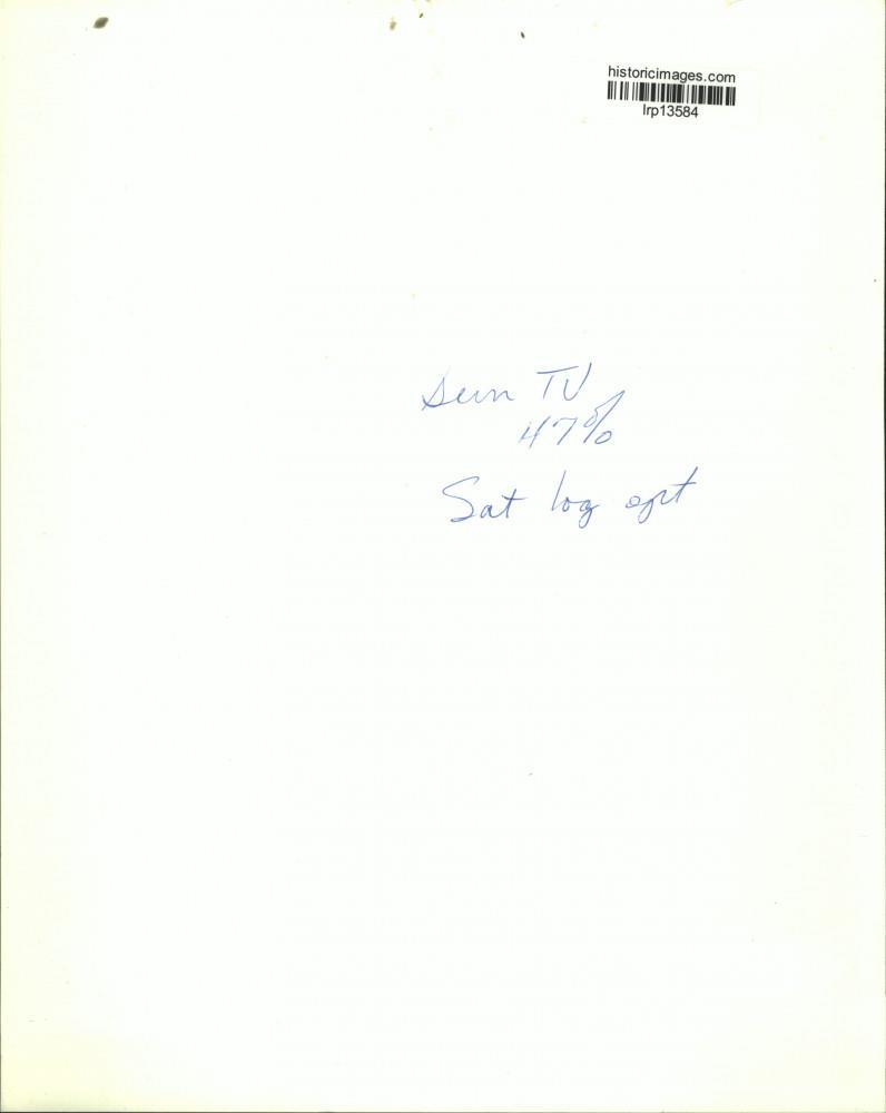 Keith Allen (born 1953),Lucy Davis (born 1973) XXX videos Elnaz Shakerdoust,Carmen Serano