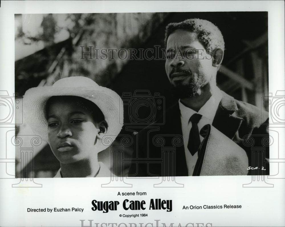 water and fire creates life in sugar cane alley by joseph zobel On a tiny budget, using 800 local residents, two professional actors, and borrowed equipment, euzhan palcy made sugar cane alley it won prizes at the 1984 venice and cannes film festivals and is now a classic.