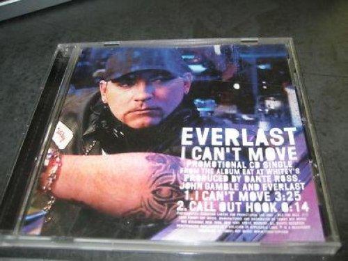 Everlast - ...Drown The Self...