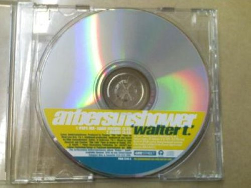 Amber Sunshower - Walter T 2trk Promo Cd Single Cs12