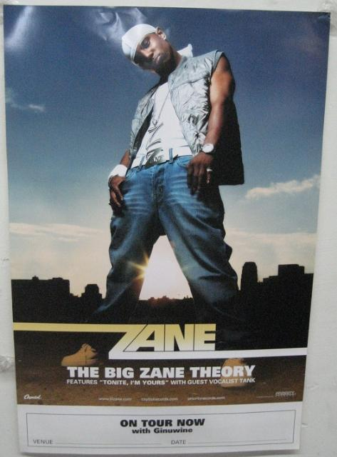 Zane - The Big Zane Theory 18x27 Poster P2200