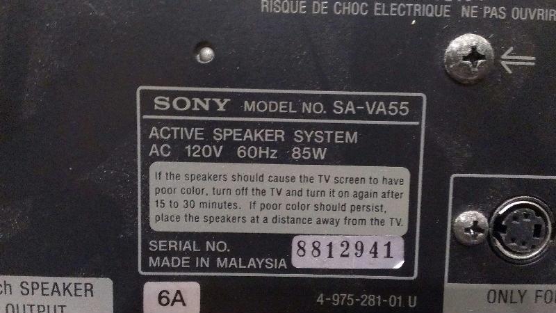 Sony SA-VA55 Home Theater Active Speaker System + SA-IE55