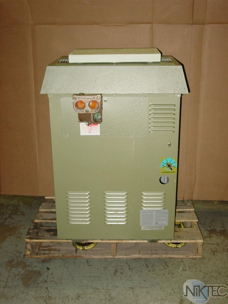 Raypak Gemini Swimming Pool Heater 181 Whg Natural Gas
