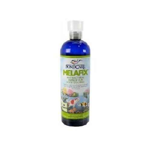 Pondcare melafix pond care koi fish treatment 16oz ebay for Koi treatment