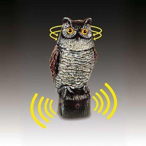 Easy Gardener Electronic Owl Garden Defense Electronic Owl