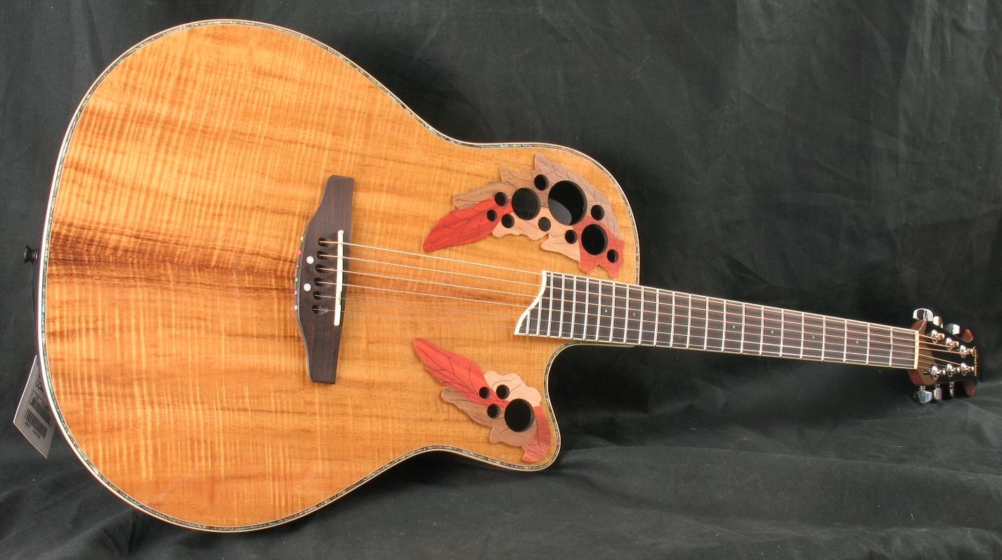 Amazon.com: Ovation Acoustic Guitar Case 8158-0: Musical ...