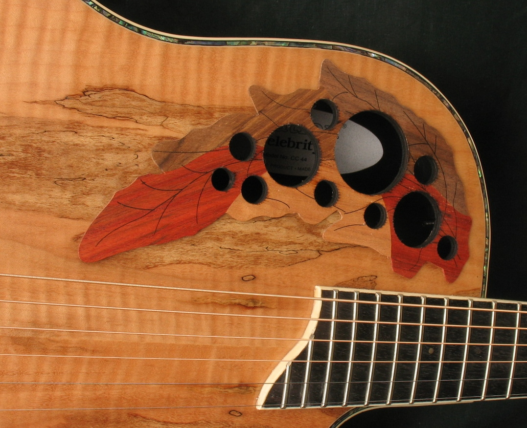 Spalted Maple Guitar Ovation Guitar Spalted Maple Top