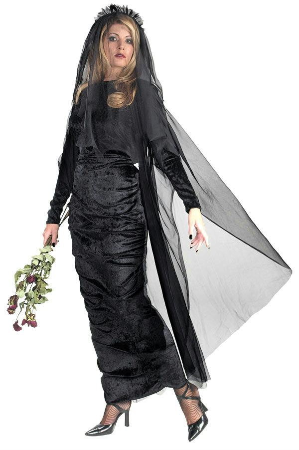 Details about Deluxe Black Widow Plus Size Full Figure Adult Costume Dress  18-20