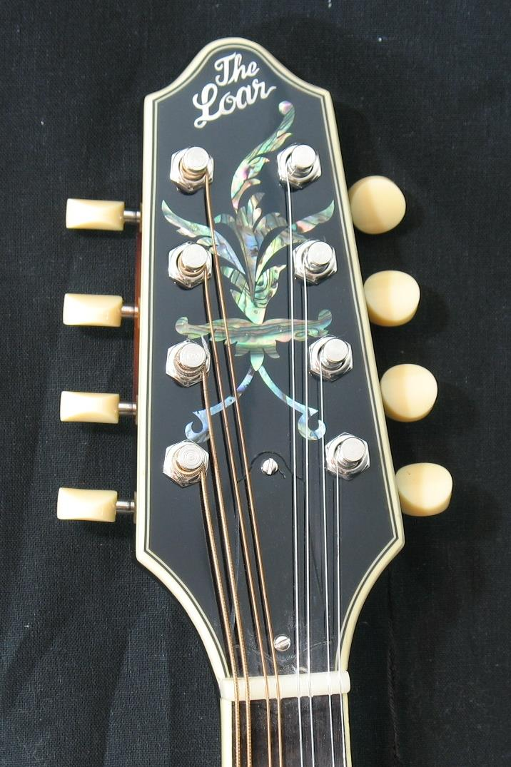 new  the loar lm