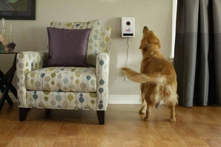 Petzi-Smart-Automatic-Pet-Treat-Dispenser-w-Wi-Fi-Camera-amp-Cell-Phone-APP-0025 thumbnail 6